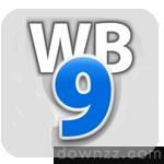 WebBuilder pro v9.0.3 绿化版