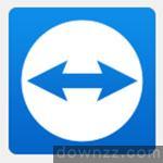 TeamViewer 14中文绿色绿化版 (附无限改ID工具)