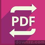 Icecream PDF Converter Pro v2.8.4绿色中文绿化版