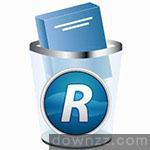 Revo Uninstaller Pro v4.2.0中文绿化版(免注册)